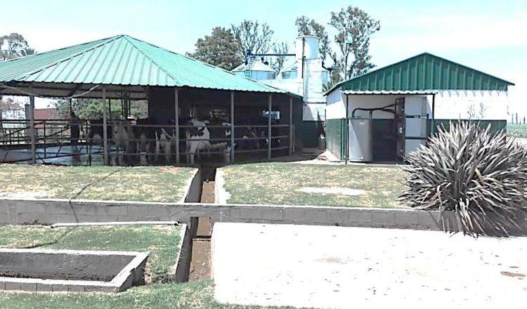 Fecolac adhiere a la postura de Coninagro sobre un Procrear Rural